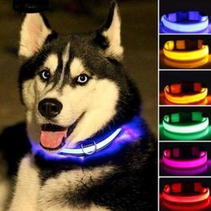 LED Pet Cat Dog Collar Night Safety Flashing Necklaces Dogs Luminous Fluorescent dog harness Pet Supplies