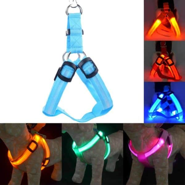 Rechargeable LED Nylon Pet Dog Cat Harness Led Flashing Light Harness Collar Pet Safety Led Leash 10