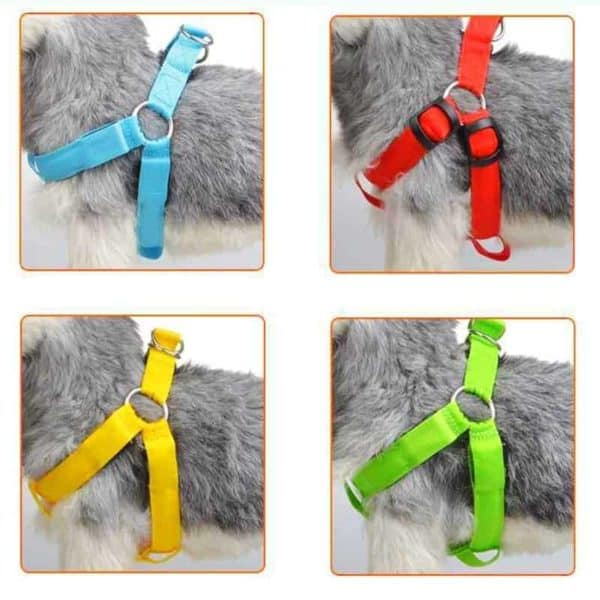 Rechargeable LED Nylon Pet Dog Cat Harness Led Flashing Light Harness Collar Pet Safety Led Leash 8