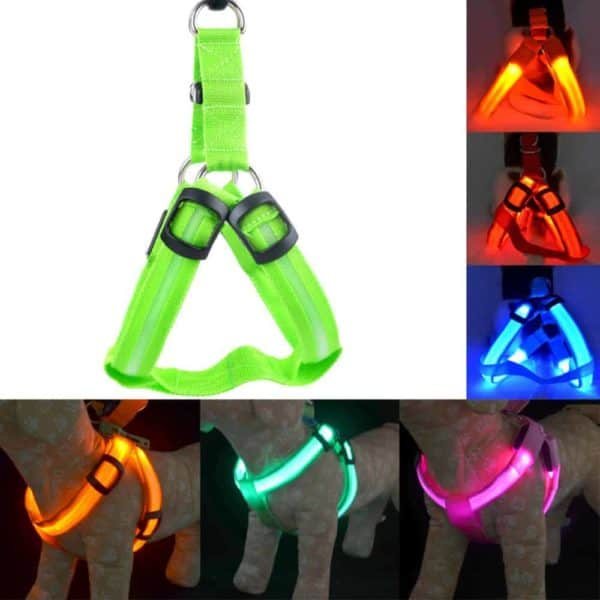 Rechargeable LED Nylon Pet Dog Cat Harness Led Flashing Light Harness Collar Pet Safety Led Leash 9