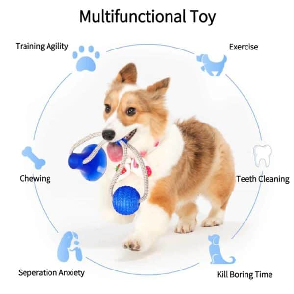 Multifunction Pet Molar Bite Dog Toys Rubber Chew Ball Cleaning Teeth Safe Elasticity Soft Puppy Suction 2