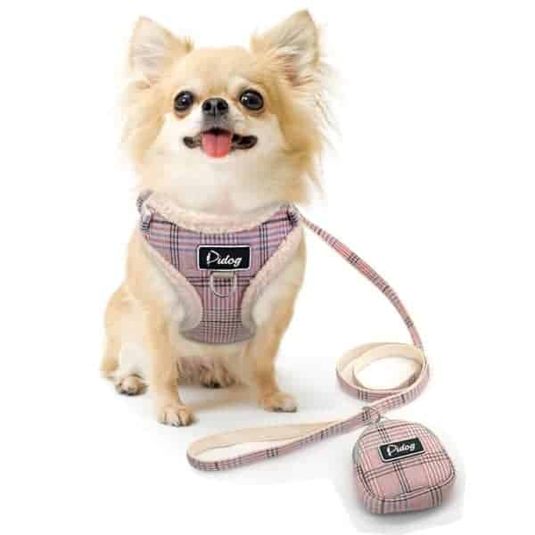 Soft Pet Dog Harnesses Vest No Pull Adjustable Chihuahua Puppy Cat Harness Leash Set For Small 3